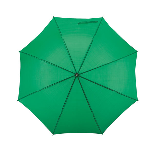 Automatic stick umbrella «Salsa», цвет green