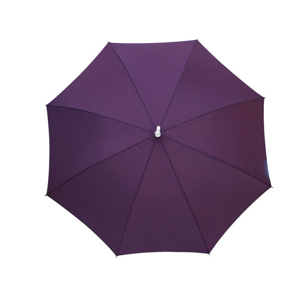 Automatic stick umbrella «Rumba», цвет lavender