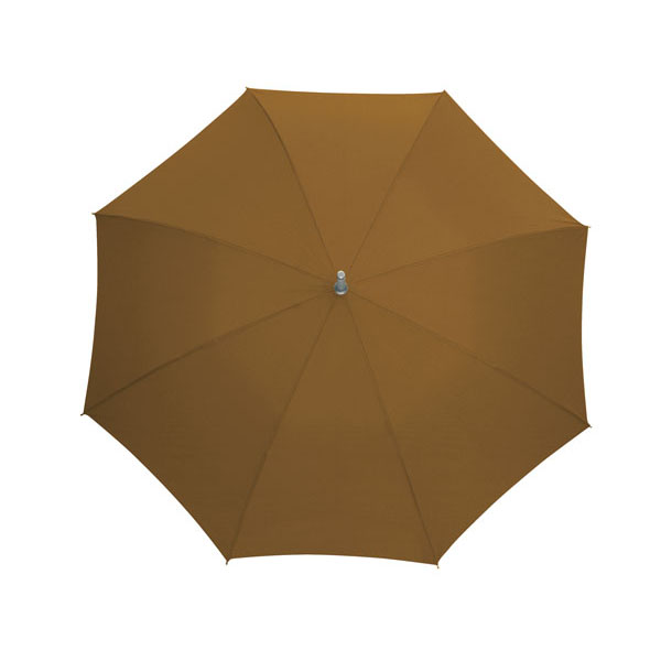 Automatic stick umbrella «Secret», цвет brown